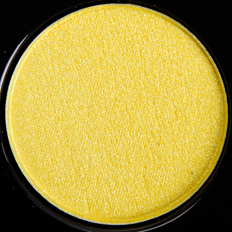 BH Cosmetics Club Tropicana #12 Foil Eyes Eyeshadow