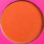 Favorite Juvia's Coral, Pink, & Orange Shades - Product Image