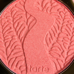 Tarte Extraordinary Amazonian Clay 12-Hour Blush