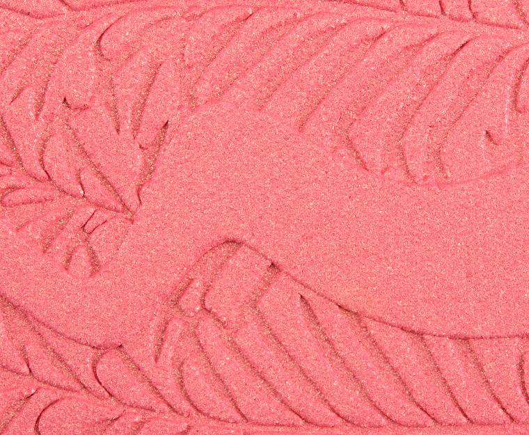 Blush Bliss Palette by Tarte #22