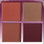 Anastasia Gradient Blush Kit
