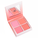 Anastasia Radiant Blush Kit
