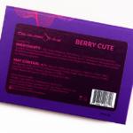 Coloured Raine Berry Cute Mini Eyeshadow Palette