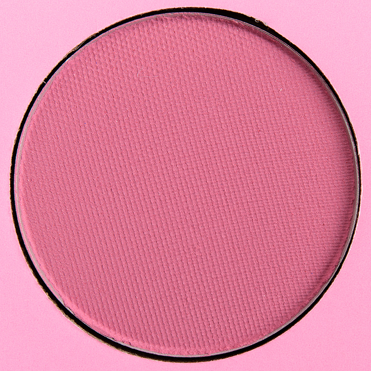 Coloured Raine Daydreaming Eyeshadow