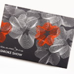 Coloured Raine Smoke Show Mini Eyeshadow Palette