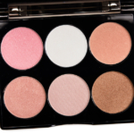 Cover FX Perfect 6-Pan Highlighting Palette