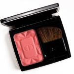 Dior Precious Rocks (864) DiorBlush Vibrant Color Powder Blush