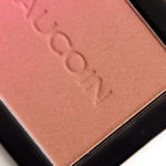 Kevyn Aucoin Capri (Right) The Neo-Bronzer