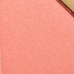 Tarte Seek Amazonian Clay 12-Hour Blush