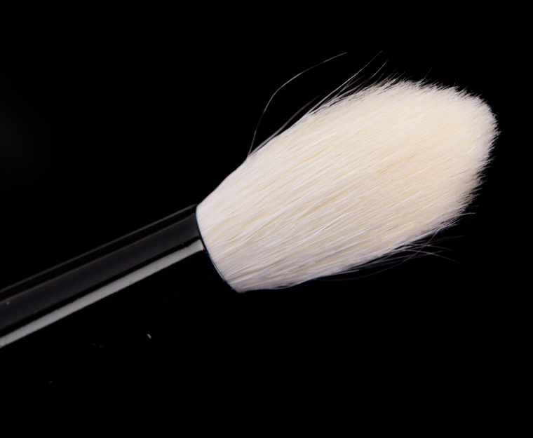 Wayne Goss Brush 17