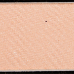 Wet \'n\' Wild Not a Basic Peach #5 Color Icon Eyeshadow (2018)
