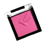 Wet \'n\' Wild Dare to Soar ColorIcon Baked Blush