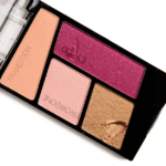 Wet \'n\' Wild Flock Party Color Icon Eyeshadow Quad