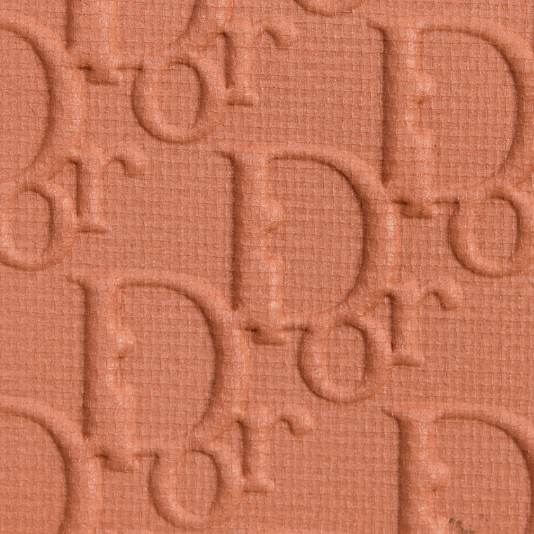 Dior Matte Ochre Backstage Eyeshadow