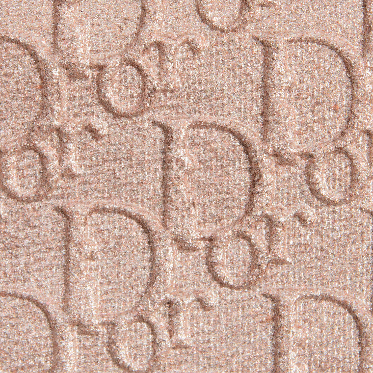 Dior Silver Highlighter Backstage Eyeshadow