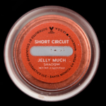 Colour Pop Short Circuit Jelly Much Eyeshadow
