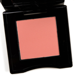 Shiseido Alpen Glow (06) InnerGlow Cheek Powder