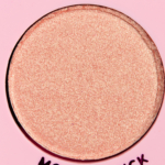 Cool Eyeshadow from Project Pan - Product Image
