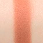 Sephora Woodland PRO Eyeshadow