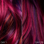 Sunset Balayage Hair - 1 Month Update