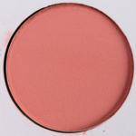 Autumn's Reign 13.0 | Sydney Grace Palette - Product Image