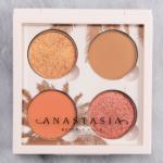 Anastasia Daytime Eyeshadow Quad