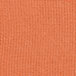 Viseart Apricotine Eyeshadow