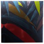 Coloured Raine Safari Raine 9-Pan Eyeshadow Palette