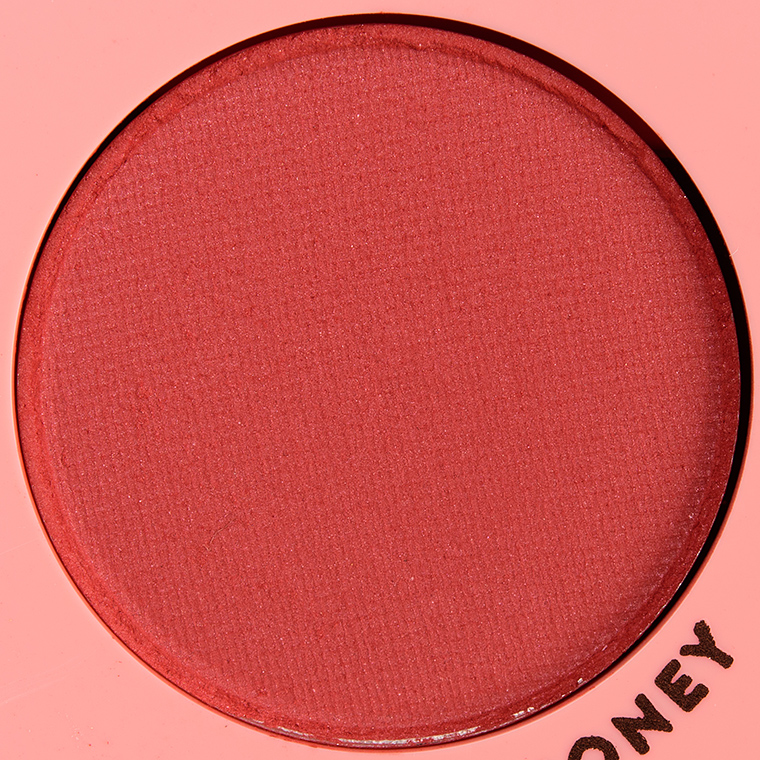 ColourPop Seed Money Pressed Powder Shadow