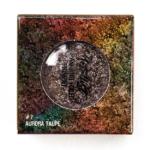 Touch in Sol Aurora Taupe (7) Metallist Sparkling Foiled Eyeshadow