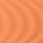Viseart Cantaloupe (Warm Mattes #6) Eyeshadow