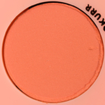 Peaches & Corals: Monochromatic - Product Image