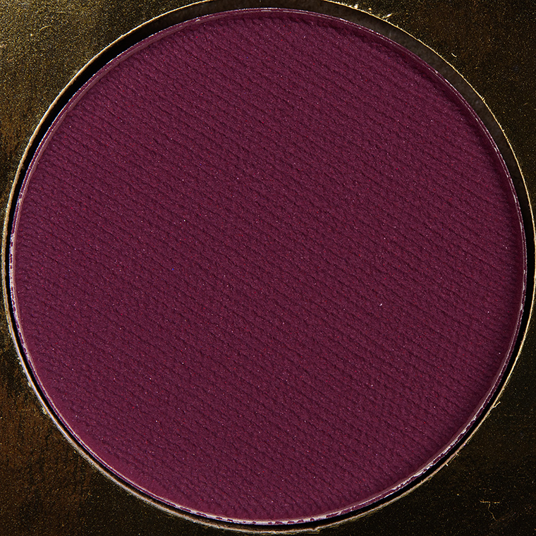 Coloured Raine Testify Eyeshadow