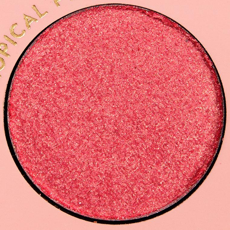 ColourPop Tropical Punch Pressed Powder Shadow