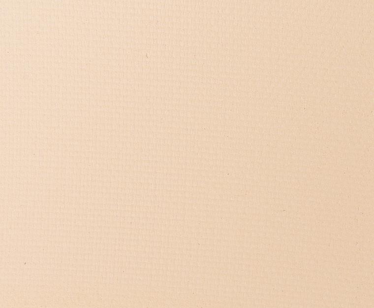 Tom Ford Beauty Mink Mirage #1 Eye Color