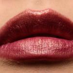Estee Lauder Show Off Hi-Lustre Pure Color Envy Lipstick