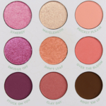 Colour Pop Garden Variety 15-Pan Shadow Palette