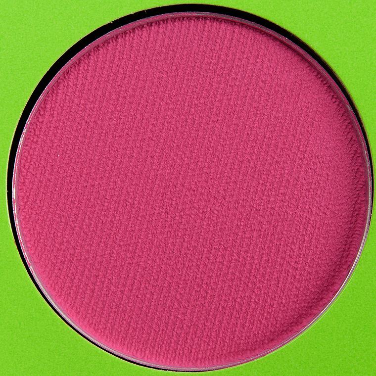 Coloured Raine Berry Beet Vivid Pigment