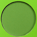 Coloured Raine Mint Leaves Eyeshadow
