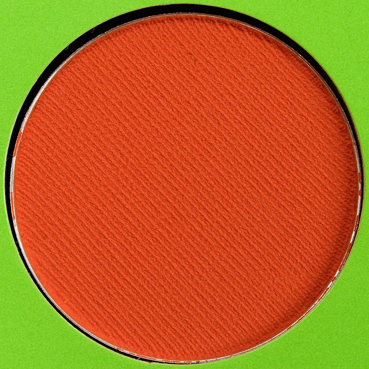 Coloured Raine Orange Carrot Eyeshadow
