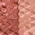 Melt Cosmetics Raw Honey Digital Dust Duo Blush
