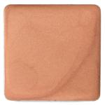 Salt New York Warm Tan Radiant Crème Tint Pro