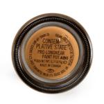 MAC Contemplative State Pro Longwear Paint Pot