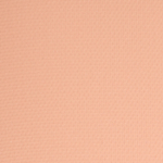 Tom Ford Beauty Desert Fox #1 Eye Color