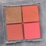 ColourPop Cookie Cluster 4-Pan Cheek Palette