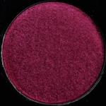 Quintessence (Light) 4.0 | Sydney Grace x Temptalia Palette - Product Image