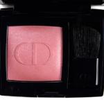 Dior Rose Delights (364) Rouge Blush