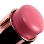 Anastasia Pink Dahlia Stick Blush