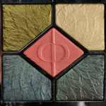 Dior Night Bird (459) 5 Couleurs Couture Eyeshadow Palette